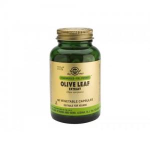 Solgar Olive Leaf Extract (Olea Europea) Αντιοξειδωτικές - Αντιβακτηριακές 60 Capsules
