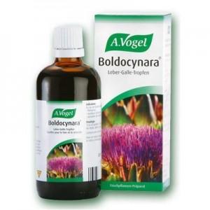 A.Vogel Boldocynara Για την πέψη 50ml